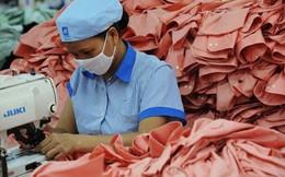 Hàng nội địa Việt Nam có thực sự chiếm ưu thế?