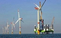 Điện gió Việt Nam không hấp dẫn nhà đầu tư