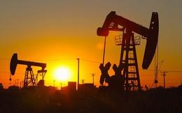 Thế giới cần 94,1 triệu thùng dầu trong năm 2015