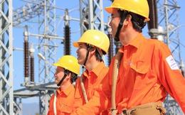 Nhật Bản quan tâm đến các dự án điện tại Việt Nam