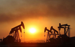 Giá dầu Mỹ và toàn cầu biến động trái chiều