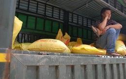 Gần 1.000 tỷ nằm 'chết dí' ở cửa khẩu Lào Cai