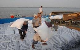 Gạo Việt thua đau dù giá thấp nhất