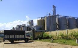 Bi hài vụ Ethanol Đại Tân: Đi đòi nợ để trốn nợ