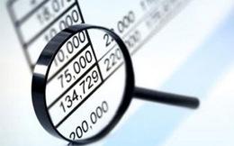 Bức tranh doanh nghiệp dưới góc độ thống kê