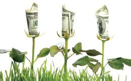 Khủng hoảng, CFO làm gì?
