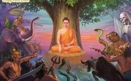 Nghe Phật dạy cách đối trị với bạo lực, khủng bố