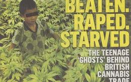 Thân phận 'nô lệ cần sa' người Việt ở Anh - Kỳ 1: Những 'bóng ma' bị chối bỏ