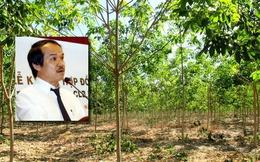 [Nóng trong ngày] Câu chuyện trên mảnh đất 'cò bay mỏi cánh' ở Lào, Campuchia của bầu Đức