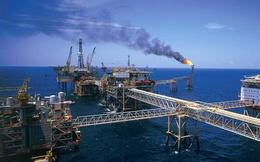VietinBank và PV GAS vào top công ty đại chúng lớn nhất thế giới
