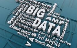 Doanh nghiệp Việt chưa biến 'Dữ liệu lớn' thành 'Dữ liệu thông minh'