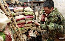 Chùm ảnh đường hầm buôn lậu từ Trung Quốc sang Hong Kong