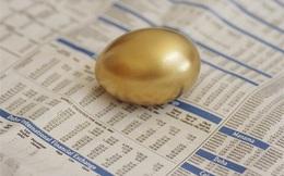 Nhà kinh tế học nghĩ gì về đầu tư vàng?
