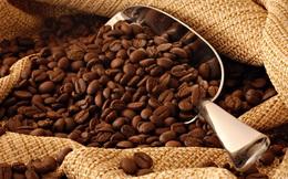 Việt Nam giữ vị trí 'Á quân' trong xuất khẩu cà phê niên vụ 2013