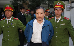 """Dương Chí Dũng: """"Tôi không can thiệp vụ mua ụ nổi"""""""