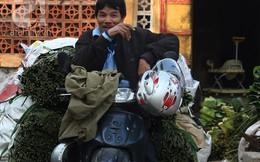 Về nơi hiếm hoi ở Hà Nội trồng lá dong gói bánh chưng kiếm cả trăm triệu dịp Tết