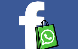 Vì sao Facebook chi 19 tỷ USD để mua WhatsApp?