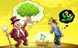 Người giàu khoái đất, dân nghèo thích giữ vàng