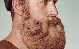 Những 'chiêu trò' quảng cáo dao cạo râu sáng tạo