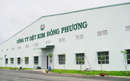 Giám đốc Công ty Dệt kim Đông Phương cùng đồng phạm gây thất thoát 966,68 tỷ đồng