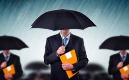 Lỗi phổ biến khi 'đốt đuốc' tìm nhân tài của các công ty là gì?